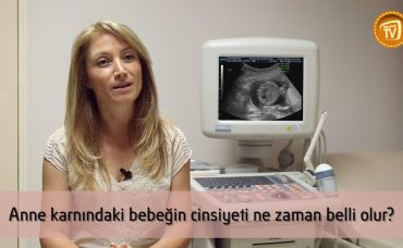 Anne Karnındaki Bebeğin Cinsiyeti Ne Zaman Belli Olur?