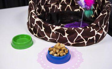 Bulyonlu Kedi Ödül Maması Tarifi