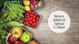 Baharın Habercisi Taptaze 5 Sebze ve Sunum Önerileri