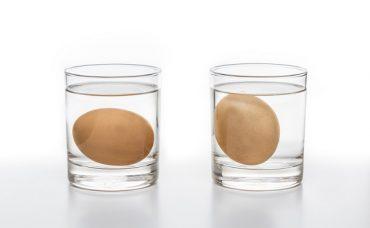 Yumurtaların Taze Olduğunu Nasıl Anlarız?