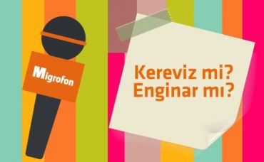 Kereviz mi, Enginar mı?