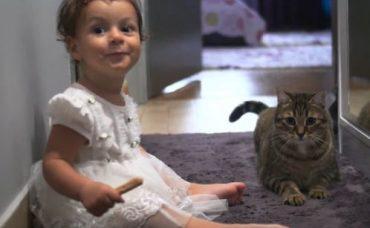 Bebeğinizi Büyütürken Evcil Hayvanların Bakımı