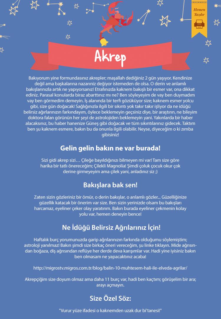 akrep_landing_page