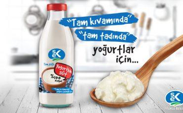 SEK Yoğurtluk Süt ile Yoğurt Yapımı