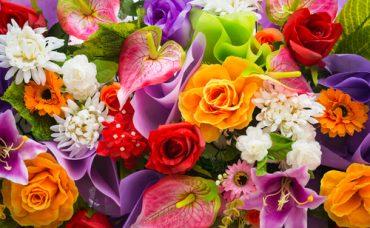 Çiçeklerin Daha Canlı Görünmesi İçin Ne Yapılır?