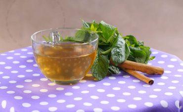 Nane Tarçın Çayı Tarifi