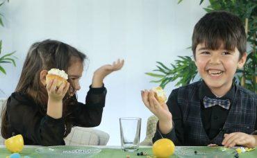 Minik Damaklar: Sarı Meyveler