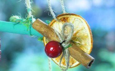 Portakal Dilimlerinden Süs Yapımı