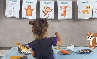 ZynpZeze ile Yiyecek ve Hayvanları Eşleştirme