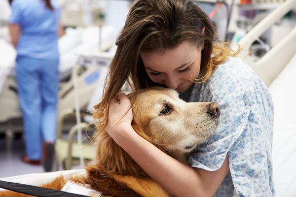 hayvan-terapisi