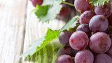 Hemen Üzüm Yemeye Başlamanız İçin 6 Neden!