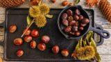 Gelin Test Edelim: Muhtemelen Yanlış Doğradığınız 6 Yiyecek