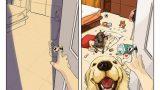 Öncesi ve Sonrası; Köpekle Yaşam!