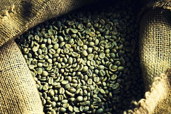 yeşil_kahvenin_faydaları
