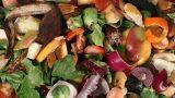 Hor Görme Garibi Belki Vitamini Vardır: Artan Meyve Kabukları ile Neler Yaptık Neler!