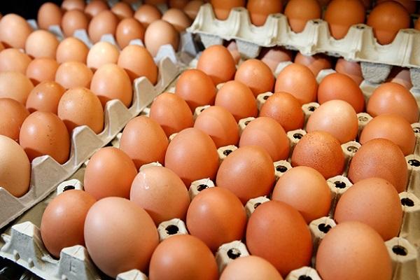 yumurta pişirme sanatı