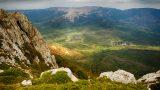 Mis Gibi Dağ Havası: Taze Kekiğin Lezzet Verdiği 4 Tarif!