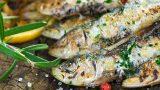Haydi Rastgele: Eylül Ayında Hangi Balık Yenir?