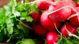 Renginde Şifa Var: Kırmızı Turpun 8 Faydası