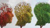 Keskin Zeka Parıldar: Beyninizi Daha Taze Tutmanın Doğal Yolları