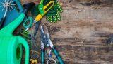Sonbahar ve Kış Bahçeniz İçin Yapmanız Gereken 5 Şey