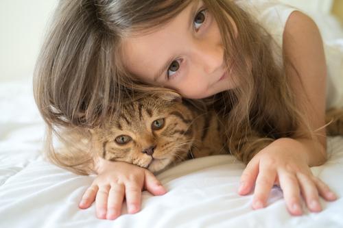 kedi-beslemek