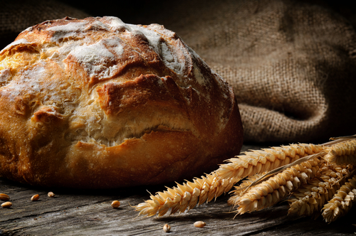 evde-ekmek-yapimi9
