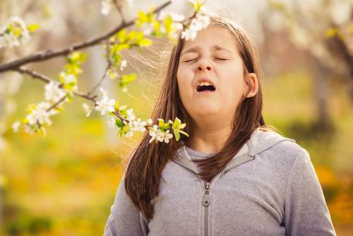 bahar-alerjisi1