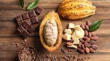 Kakao Flavanolleri Nedir? Faydaları Nelerdir?