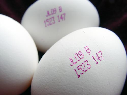 yumurtalarin-numaralari